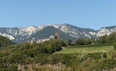 Vinguiden Gambero Rosso 2018 har givet 27 vine fra Alto Adige topkarakteren 3 glas.